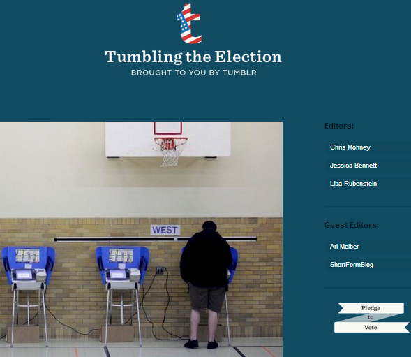 tumblr_elections