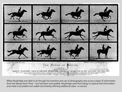 muybridge horse