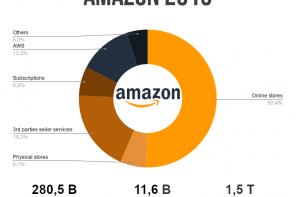 Amazon: ricavi 2019 e sviluppi futuri